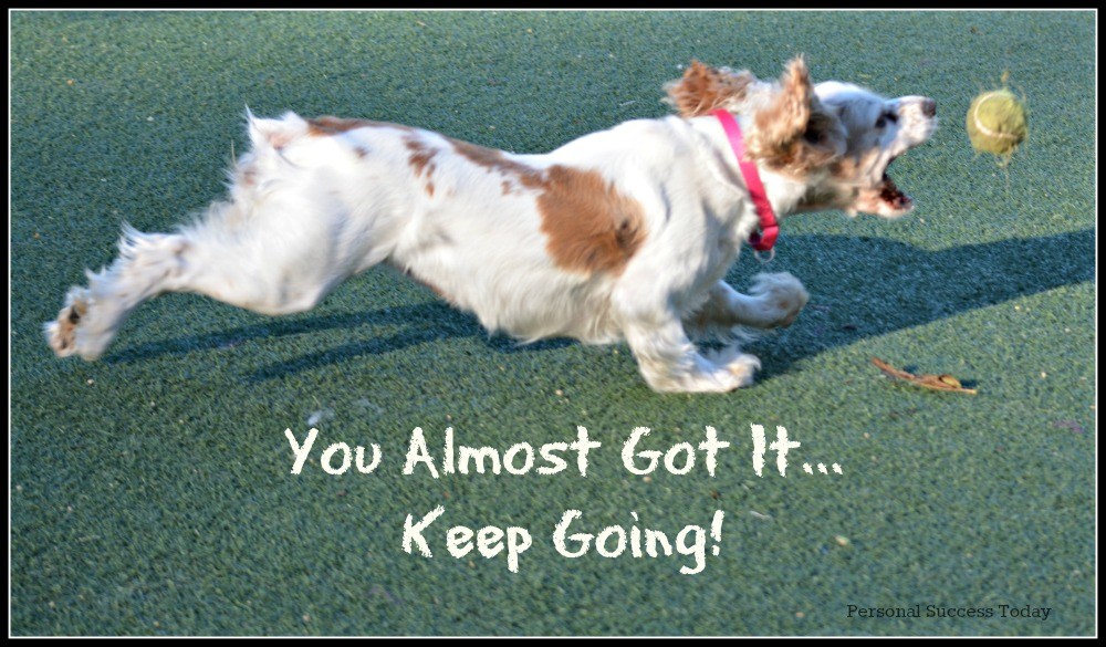 dog-quote-keep-going