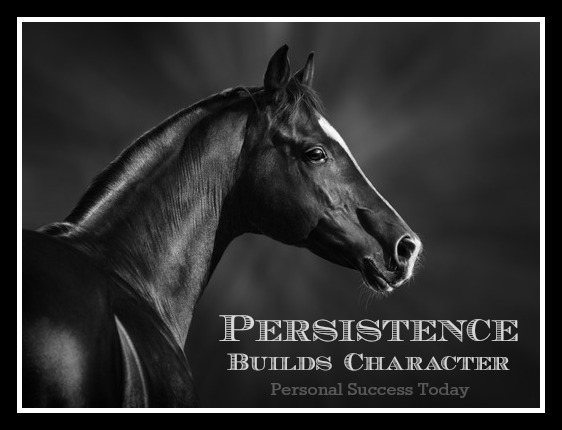 Goal Setting Quotes 5: persistence builds character